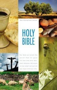 0310435226 | NIV Textbook Bible