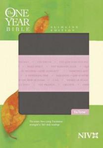 1414338627 | NIV One Year Bible Slimline Gray/Pink Tutone (1984)