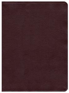 0802484654 | NASB Ryrie Study Bible Burgundy Bonded Leather
