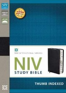 0310437490 | NIV Study Bible