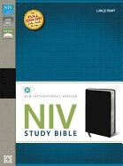 031043758X | NIV Study Bible Large Print
