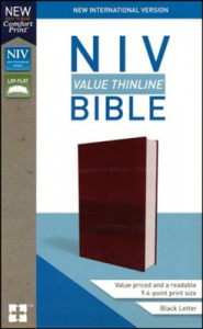 031044845X | NIV Value Thinline Bible Comfort Print Burgundy Leathersoft