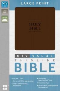 0310437725 | NIV Premium Value Thinline Large Print Bible