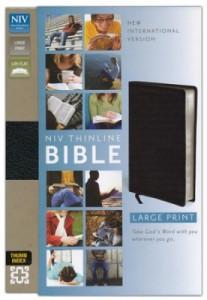 0310435943 | NIV Thinline Bible Large Print