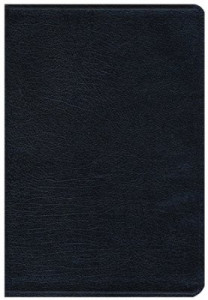 0310435919 | NIV Thinline Bible Large Print