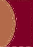 031093611X | NIV Study Bible- Compact