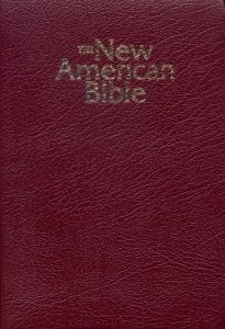 0529061414   NABRE Gift and Award Bible Deluxe
