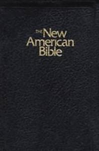 0529061899 | NABRE Deluxe Gift Bible