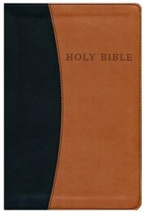1598562460 | KJV Personal Size Giant Print Reference Bible