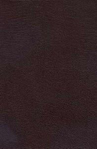 0718012623 | Charles Stanley Life Principles Bible