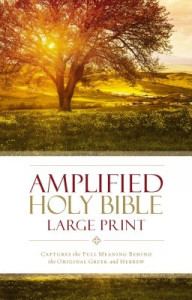 0310444039   Amplified Holy Bible Large Print Revised