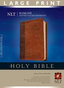 141433849X | NLT Slimline Center Column Reference Large Print Bible
