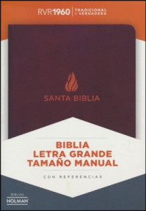 Span-RVR 1960 Hand Size Giant Print Bible-Brown Bonded Leather Indexed