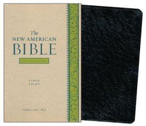 0195298101 | NABRE Bible Large Print