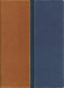 0310937159 | NIV/Message Parallel Bible, Personal Size, DuoTone, Tan/Blue