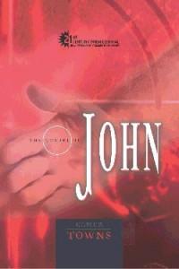 0899578128 | Comt-Gospel Of John (21st Century Biblical Series)