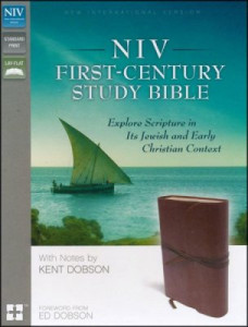 0310433754 | NIV First Century Study Bible