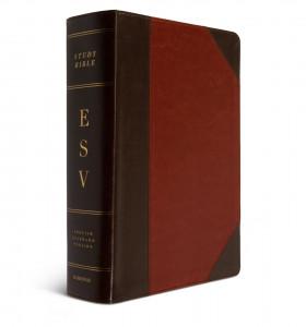 1433557665 | ESV Study Bible Large Print