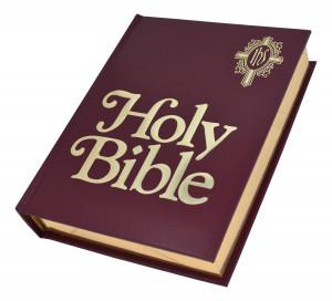 0529065185 | NABRE Catholic Family Bible