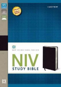 0310437571 | NIV Study Bible Large Print