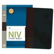 0310437466 | NIV Study Bible