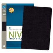 0310437431 | NIV Study Bible