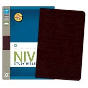 031043744X | NIV Study Bible