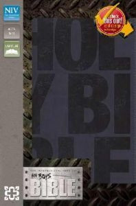 0310729173 | NIV Boys Bible