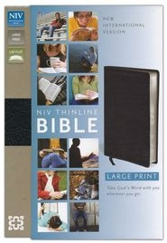 0310435889 | NIV Thinline Large Print Bible