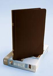 0310435900 | NIV Thinline Large Print Bible
