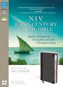 0310440181 | NIV First Century Study Bible