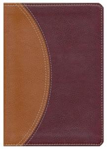 0310428521 | NIV Study Bible Compact