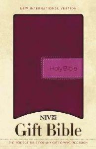 0310438438 | NIV Gift Bible