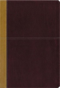 0310446708 | KJV and Amplified Parallel Bible Large Print Leathersoft Camel rich red