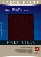 1414338481 | NLT2 Slimline Center Column Large Print