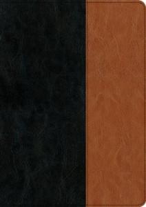 1496407695 | NIV Every Man's Bible Large Print Black Tan TuTone
