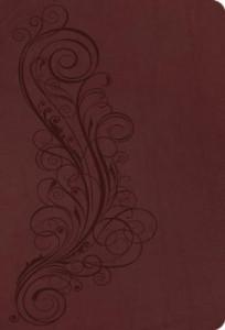 0736969896 | NASB New Inductive Study Bible