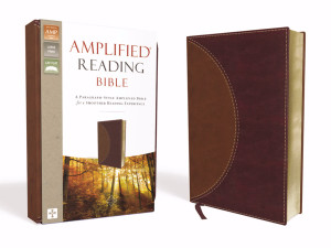 0310450225   Amplified Reading Bible Brown LeatherSoft