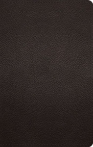 1433572028 | ESV Large Print Personal Size Bible-Deep Brown Buffalo Leather