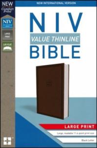 0310448530 | NIV Value Thinline Bible Large Print Chocolate Leathersoft