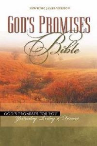 0718006496 | God's Promises Bible
