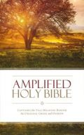 0310443873 | Amplified Holy Bible