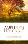 0310443903 | Amplified Holy Bible (Revised) Softcover