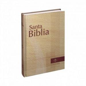 biblia letra gigante book block